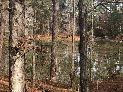Great Timber And Hunting Tract : Talbotton : Talbot County : Georgia