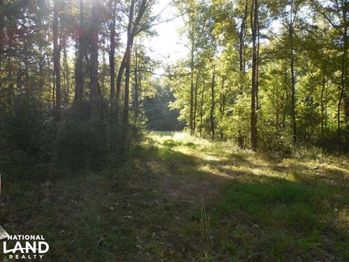 O'quinn North Tract, 54.8Ac : Harriston : Jefferson County : Mississippi