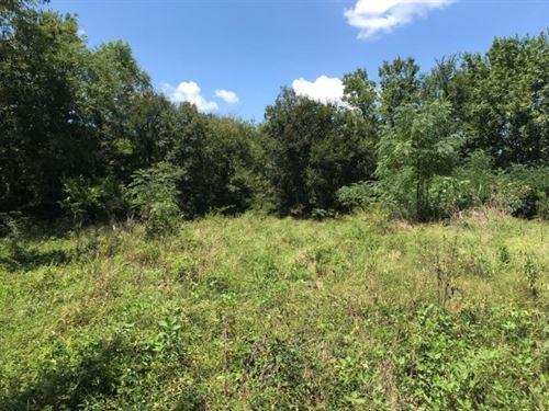 Hunting / Recreation Titus County : Talco : Titus County : Texas