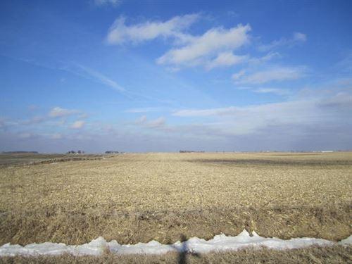 Highly Tillable Farm Land Auction : Kamrar : Hamilton County : Iowa