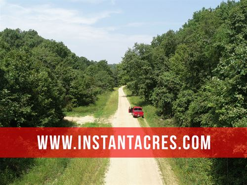 11 Acres On Conservation Land : Birch Tree : Shannon County : Missouri