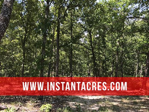 5.5 Acres In Ozarks With Views : Drury : Douglas County : Missouri