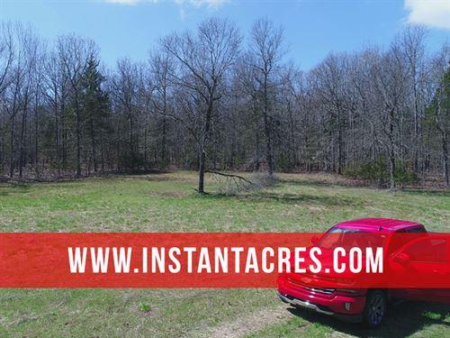 8 Acres At Bull Shoals Lake : Branson : Taney County : Missouri