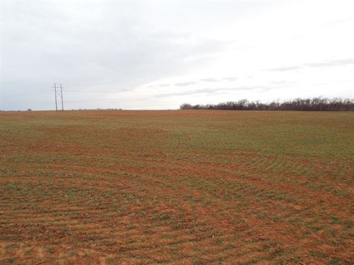93 Acres Cropland & Timber : Enid : Garfield County : Oklahoma