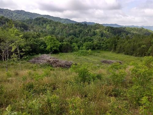 Beautiful Rolling Land : Rogersville : Hawkins County : Tennessee