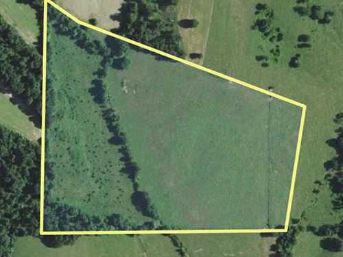 34 Acres Ready For Country Living : Sedgewickville : Bollinger County : Missouri