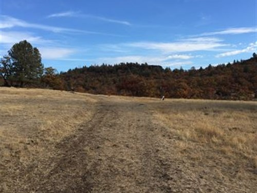 Beautiful Ranch Land In Remote Area : Hornbrook : Siskiyou County : California