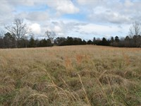 Country Acreage With Pasture : Clinton : Van Buren County : Arkansas