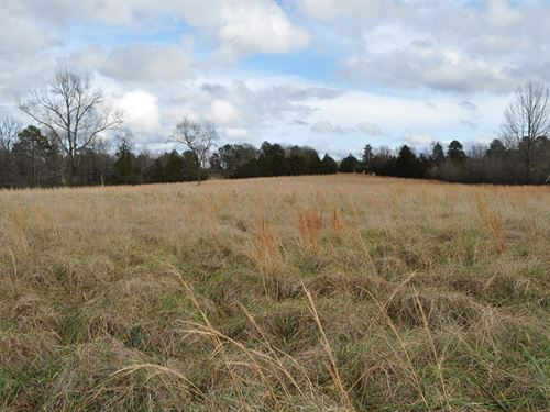 Country Acreage With Pasture : Clinton : Van Buren County : Arkansas