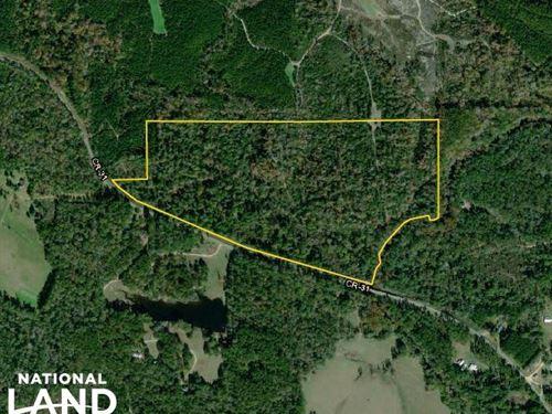 The Frankville Hwy 31 Santa Bogue : Millry : Washington County : Alabama