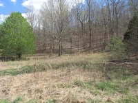 Buildable Land, Small Creek, Water : Linden : Perry County : Tennessee