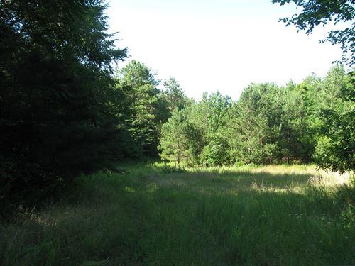 TN Huntiing Land, Deer, Duck, Pond : Morris Chapel : Hardin County : Tennessee