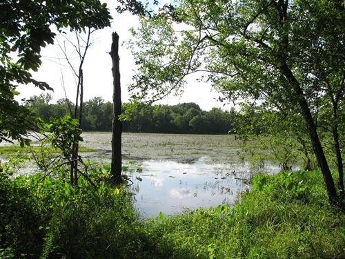 Huntiing Land Tn, Deer, Duck, Pond : Morris Chapel : Hardin County : Tennessee