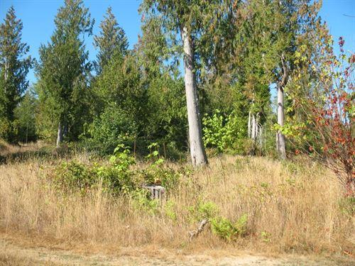 5.4 Acres Prime Washington : Grapeview : Mason County : Washington