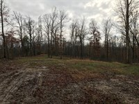 Hunting Property, Camden Tennessee : Camden : Benton County : Tennessee