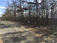 2 Acres Near Current River : Ripley : Ripley County : Missouri