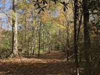 102 +/- Acres With Camp Cr3 : Georgiana : Conecuh County : Alabama