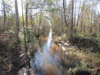 Wheeler Side Tract : Lamar : Darlington County : South Carolina