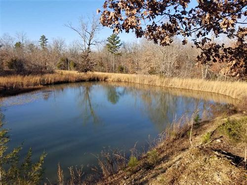 63.7 Acres Near Rivers And Elk Res : Winona : Shannon County : Missouri