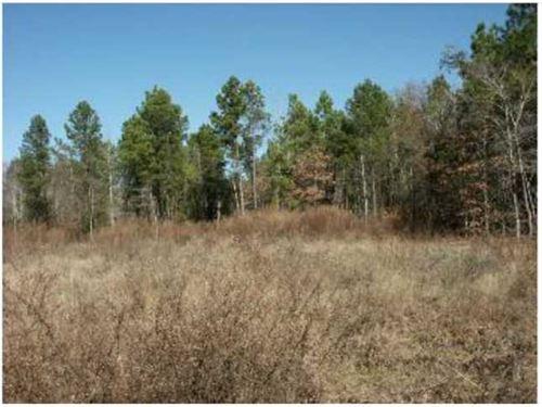 117.84 Acres For Sale : Jacksonville : Cherokee County : Texas