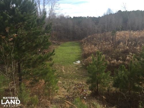 Turn Key Hunting Tract With 2 Mobil : Durant : Holmes County : Mississippi