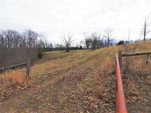 Farm Near Buffalo River Access : Gilbert : Searcy County : Arkansas