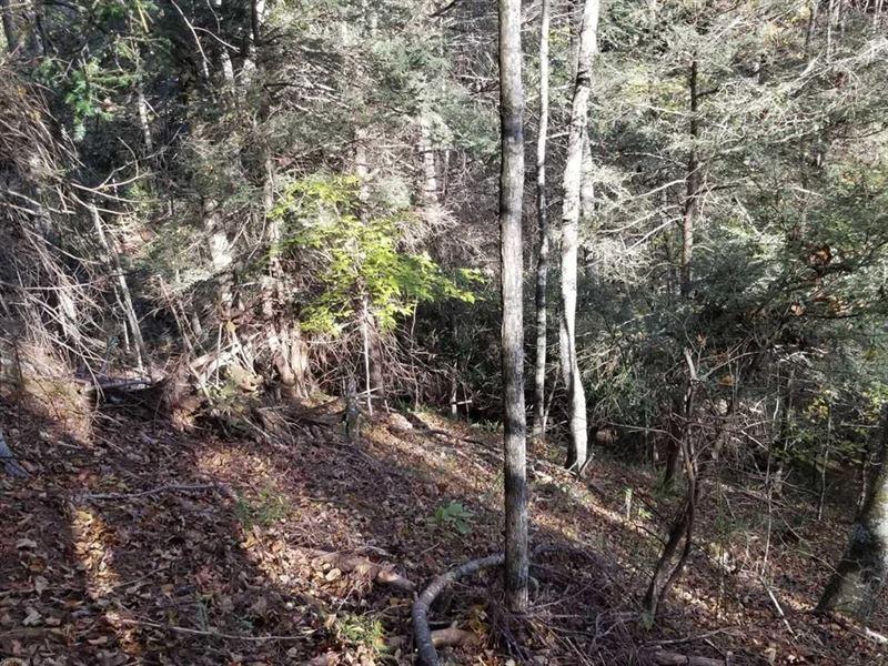 Mountain Property in Shawsville VA : Shawsville : Montgomery County : Virginia