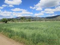 Awesome 1.33 Acres, New Pine Creek : New Pine Creek : Modoc County : California