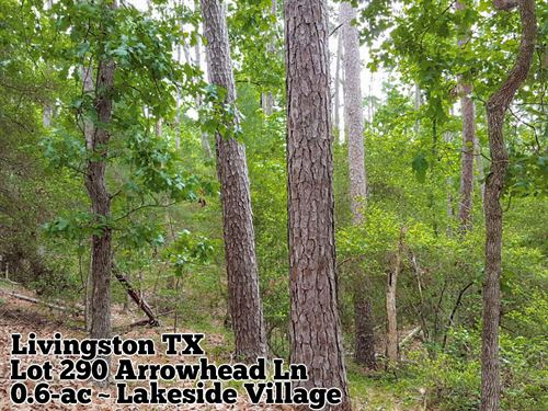 .62 Acres In San Jacinto County : Huntsville : San Jacinto County : Texas