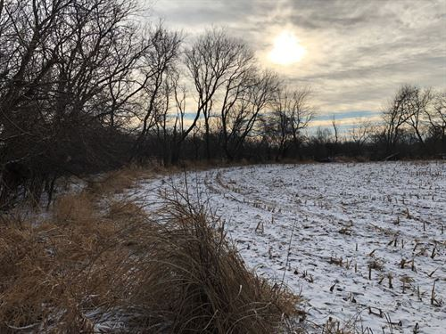 126 Acres With 60 Tillable : Burnett : Dodge County : Wisconsin