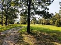 Hunting Land in North Arkansas : Horseshoe Bend : Izard County : Arkansas