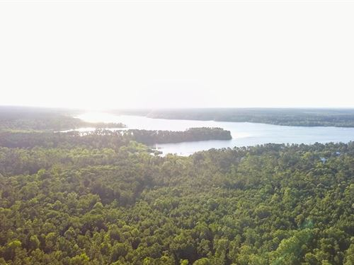 8.37 Acres Lake Sam Rayburn Land : Lufkin : Angelina County : Texas