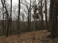 Private 10+/- Acre Homesite : Travelers Rest : Greenville County : South Carolina