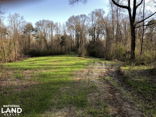 North Sibley Tract, 45.63 AC : Natchez : Adams County : Mississippi