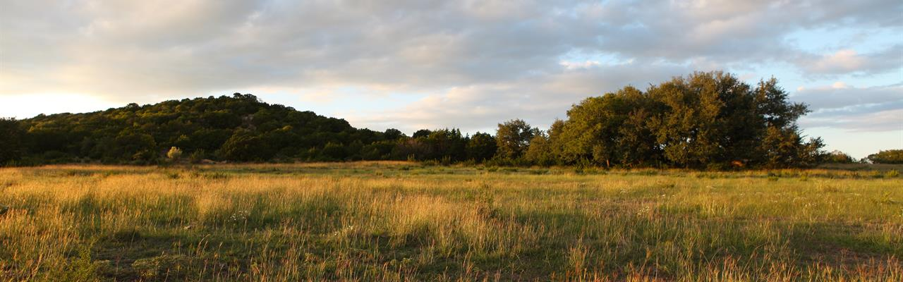 Hill Country Homesite With Big View : Copperas Cove : Lampasas County : Texas
