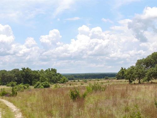 Prime Hill Country Acreage : Burnet : Texas