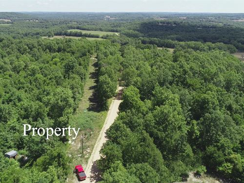 10 Acres With Power And Meter : Hartville : Wright County : Missouri