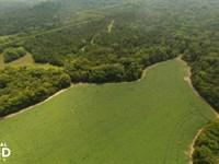 Double Church Road Farm East : Benton : Lowndes County : Alabama