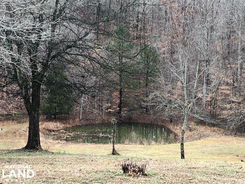 Lester Hollow Road Hunting Retreat : Waterloo : Lauderdale County : Alabama