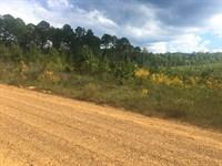 Land, Shuqualak Rd, Shuqualak, MS : Shuqualak : Noxubee County : Mississippi
