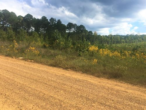 Land, Shuqualak Rd, Shuqualak, MS : Shuqualak : Noxubee County : Mississippi