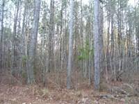 76.2 Acres Cabin Located Oktibbeha : Starkville : Oktibbeha County : Mississippi
