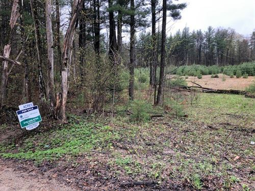 Wooded Land-Nice New Home Site : Dolgeville : Fulton County : New York