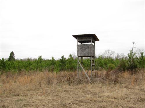 Property Tn, Field, Creek : Saltillo : Hardin County : Tennessee