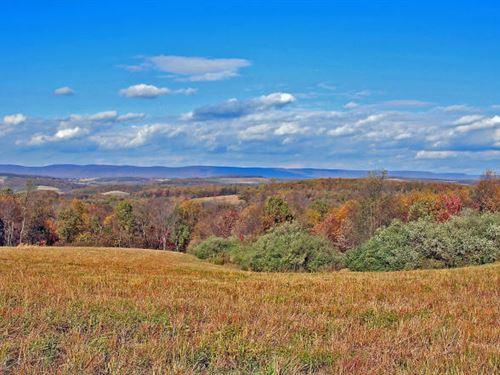 12 Acre Building Site : Millville : Columbia County : Pennsylvania