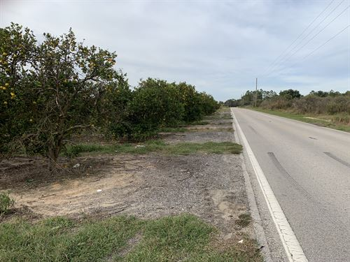 29 Acres, Res, Dev, Davenport, Fl : Davenport : Polk County : Florida