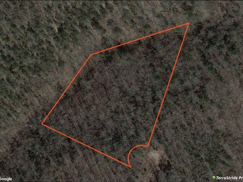 Lot 13, Homewood Estates : Kirbyville : Taney County : Missouri