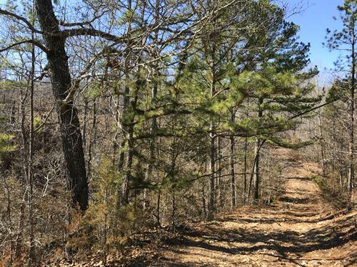 8 Acres With Waterfall : Ava : Douglas County : Missouri