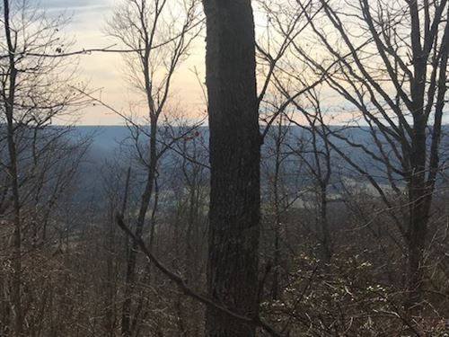 100+/- Acres Of Prime Hunting Land : Sewanee : Marion County : Tennessee