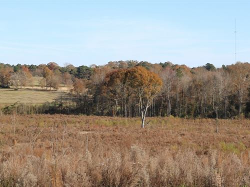 120 Acres In Covington County In MO : Mount Olive : Covington County : Mississippi